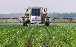 U.S. corn production dropped 5% in 2010 to 12.4 billion bushels, according the U.S. Agriculture Department.