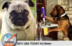 Doritos' consumer-created ad shows pug who gets revenge on the guy who taunts hims.