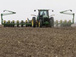 Corn planting.