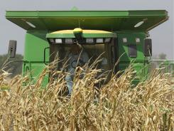 Wheat, Corn Decline as Weather Seen Improving U.S., Europe Crops