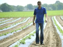 Braden Janowski walks through a watermelon field in Niles, Mich. Janowski invested in the 430-acre farm.