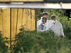 Investigators in June inspect a greenhouse on an organic farm northwest of Berlin for possible E. coli contamination.