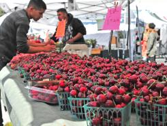 Cherries for sale at the Glen Park farmers market, which opened May 15 in San Francisco's Glen Park neighborhood.