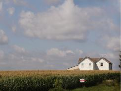 A corn farm near Fredericksburg, Iowa.
