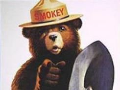 Smokey Bear is one of twenty ad icons up for consideration into the Madison Avenue Advertising Walk of Fame.