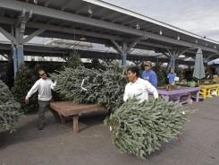 Freshly cut trees are prepared for customers at Logan Trading Co. in Raleigh, N.C., on Dec. 5.
