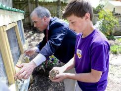 John Baldridge, 13, returns a quail to a pen in the backyard of his home in Roanoke, Va., with the help of his father, Duke Baldridge on March 26, 2012. They raise quail eggs to sell to local restaurants.