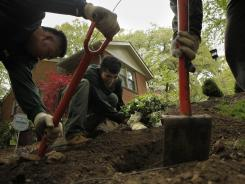 From left, landscapers Bernal Orellana, Wilman Orellana and Jeybin Contreras plant shrubs at a Washington D.C.-area home.