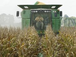 A combine harvests corn near Altheimer, Ark., in this July 16, 2012 photo.
