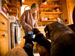 Pam Carr feeds treats to some of the dogs in her home outside of Florissant, Colo., which offers sanctuary to aging animals.