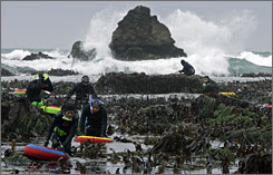 Abalone divers brave Pacific Ocean surf as they hunt for the mollusk at low tide in Fort Ross, Calif.