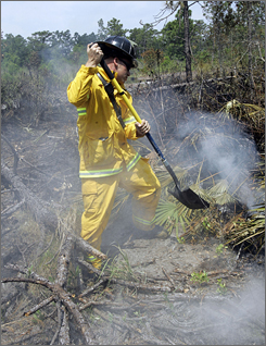 Firefighter Josh Walker dumps sand on a hot spot during mop-up operations in a Kissimmee, Fla., subdivision Thursday.
