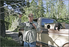 Chad Shimmin of the Utah Wildlife Resources tries to pick up a signal of tracking dogs Monday as he helps search for a bear in American Fork Canyon. The bear mauled and killed a 11-year-old-boy as he slept in his tent Sunday.