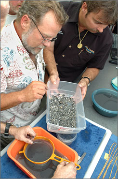 The salvagers Blue Water Ventures Key West discovered pearls and other artifacts that may be worth more than $1 million.