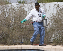 Luis Navarro, a mosquito-control officer in Maricopa County, Ariz., treats a pool. Mortgage foreclosures have made him busier this year, he says.