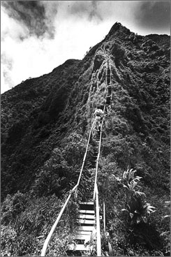 "Die-hard hikers travel Oahu's ""Stairway to Heaven."""