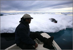 Dines Mikaelsen, a hunter and tourist guide in Tasiilaq, Greenland, approaches a seal he has just killed on an iceberg on Ammassilak Island, Greenland. Melting ice has made it harder to find the precious seals, but it has also brought tourism to Greenland.