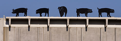 Metal pigs line the top of the receiving dock at the Swift & Company meatpacking plant, the  largest employer in Marshalltown, Iowa. Swift traditionally hires number of Spanish-speaking immigrants.