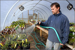 There are no outdoor watering restrictions in Chattanooga, Tenn. Farm Stand and Greenhouse Manager Mike Barron waters plants in one of two greenhouses at Crabtree Farms in Chattanooga.