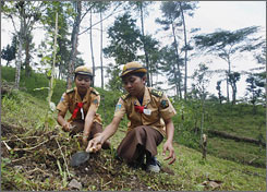 Indonesian students plant a tree in Besakih village on the island of Bali, Nov. 28. For years, Indonesia has made money by chopping down its forests. Now, the archipelago with roughly 10% of the world's tropical rainforests, wants to earn billions by preserving what is left.