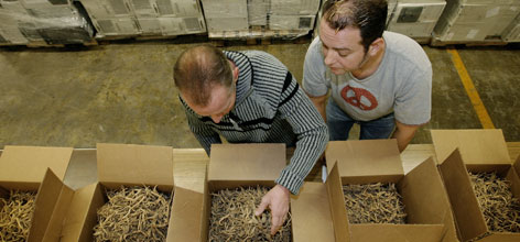 Ginseng trader Mitchell McCullough, left, and Russell Grace examine confiscated stock at a Frankfort, Ky., auction.