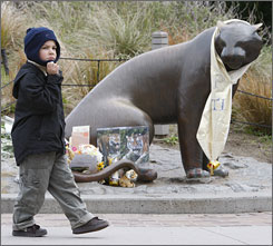 Frank Marana, 4, walks away from the impromptu memorial to the San Francisco Zoo tiger Tatiana. The zoo opened Thursday morning for the first time since the fatal mauling of a 17-year-old.