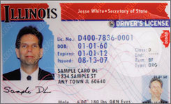 Sample drivers license from Illinois.