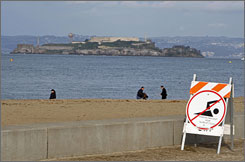 San Francisco closed the beach at Crissy Field after an estimated 2.7 million gallons of sewage spilled into Richardson Bay.
