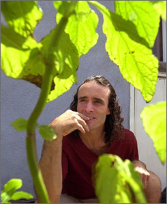 Daniel Siebert, an amateur botanist, poses with salvia divinorum plants outside his Malibu, Calif., home Aug. 21, 2001. Salvia divinorum is native to Mexico and has been used for hundreds of years in indigenous healing rituals.