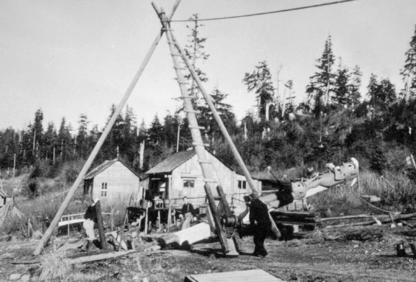 A totem pole is raised in Klawock, Alaska in 1940 during the Civilian Conservation Corps restoration project. The City of Klawock is planning a three-day totem pole raising celebration in August to celebrate the completion of at least seven more replacement poles. The seven poles will be lifted by hand over the three-day period.