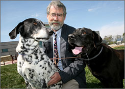 Rick Johnson of the Sacramento SPCA with Misty, a Dalmatian mix, and Hampton, a Labrador mix. Both were abandoned.