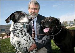 Rick Johnson of the Sacramento SPCA with Misty, a Dalmatian mix, and Hampton, a Labrador mix. Both were abandoned.