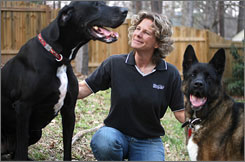 Calley Gerber plays with her two dogs Presley, left, and Justice, right, at her home in Raleigh. Gerber quit her job as a corporate lawyer and is trying to get into animal law, a field that is becoming popular in some law schools.