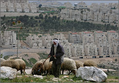 A Palestinian shepherd tends his sheep near the Jewish neighborhood of Har Homa in East Jerusalem on Monday. Israel has approved the construction of 1,400 new apartments in contested territory, an Israeli watchdog group reported.
