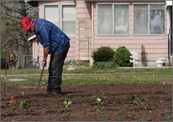 Leonard Morrison uses a rake to prepare a row in his garden for tomato plants on Tuesday at his home in Independence, Kansas.