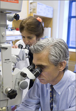 Doctors Albert Maguire, right along with wife Jean Bennett at the University of Pennsylvania are part of two teams of scientists in the U.S. and Britain that are using gene therapy to dramatically improve vision in four patients who inherited eye disease.