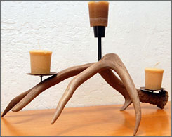 Cooper Munson created this candleholder from a set of elk antlers. Shed hunters like Munson say they can sell the racks for up to $20 per pound or fashion them into craft items.