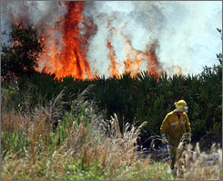 A firefighter walks away from burning brush in the Oakmont Preserve subdivision in Malabar, Fla., Tuesday.