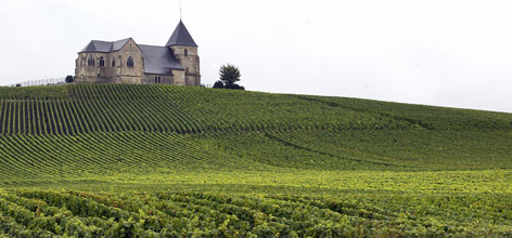 A champagne vineyard near Epernay in eastern France may cash in on an industry boom since regulators OK'd extending the region's crop borders.