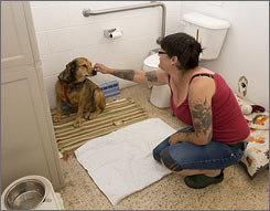 Stray Rescue shelter volunteer Jennifer Kempen spends some time with Josephine, a shepherd mix that stays penned up in the building?s only bathroom due to overcrowding.