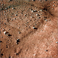 One of the first color images from the Phoenix Mars Lander shows the surface of Mars after the Phoenix Lander landed successfully in the first-ever touchdown near Mars' north pole on Sunday.