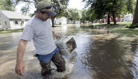 Russ Shelton carries his cat, Sam, across the flooded Ninth St. NW after rescuing the cat from his home, June 14, 2008, in Cedar Rapids, Iowa. The water that flooded the city finally started to recede Saturday, after forcing 24,000 people to flee.