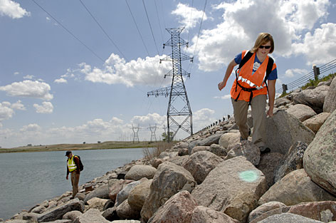 Biologist Misti Schriner, right, and Darren Doderer look for birds that have run into the overhead power lines along the shore of Lake Audubon in Coleharbor, N.D., in May.