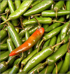 Tomatoes were first investigated in the salmonella outbreak, but a second probe found a link between the illness and the consumption of fresh jalapeno and perhaps serrano peppers.
