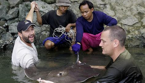American biologist Zeb Hogan, left, and British angler Rick Humphrey, right, examine a stingray captured by two Thai fishermen in the Maeklong River, on May 30. Hogan is on a worldwide quest to find the largest freshwater fish.