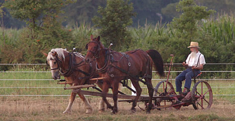 An Amish farmer works in the fields near Dover, Del. Amish are prohibited from driving automobiles but not from using fuel-powered motors and engines.