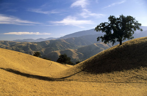 Environmentalists and a California real estate company achieved a deal on the Tejon Ranch.