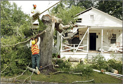 Wilmington Public Service workers prepare to move a tree, downed by Tropical Storm Hanna, in Wilmington, N.C. Damages associated with the storm have been light, but rain has been heavy across the Mid-Atlantic.
