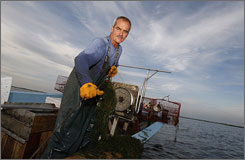 Nicholas Alfonso, a longtime shrimper, is supplementing his income by crabbing.