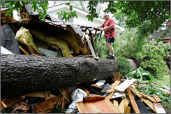 Jim Robertson walks along a downed pine tree to survey damage to his apartment Sunday in Tallahassee, Fla., the state capital. Tropical Storm Fay hopscotched across Florida, making landfall four times, before being downgraded.